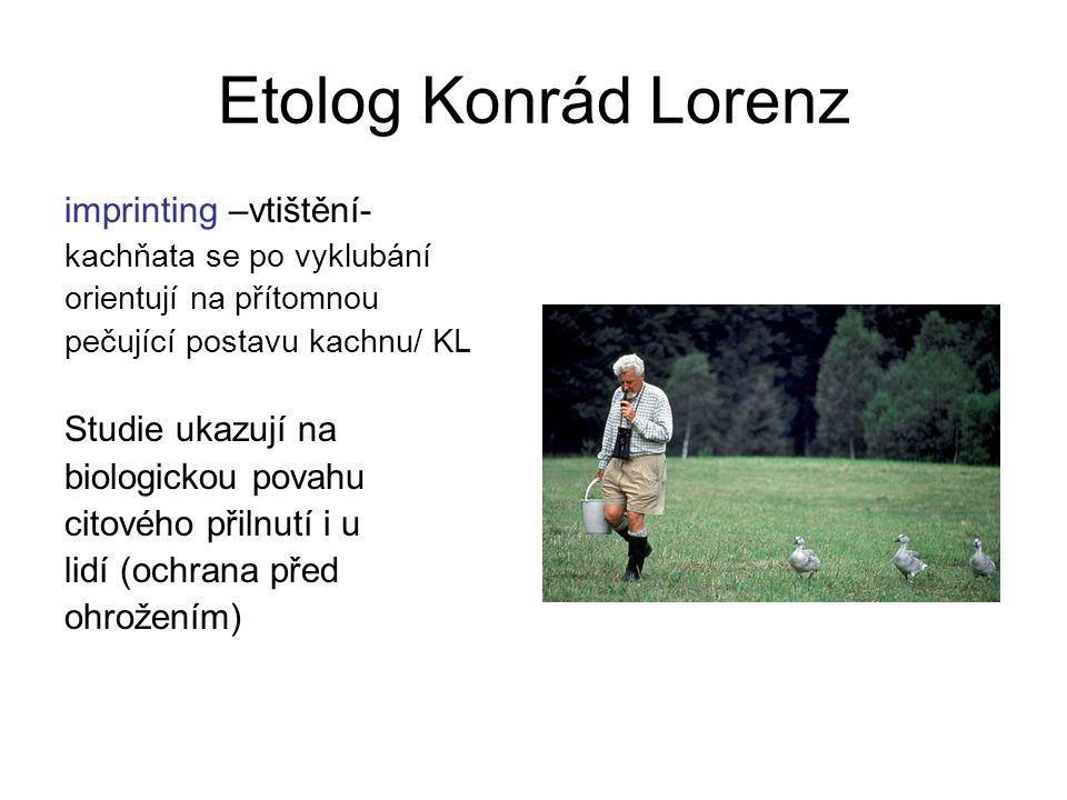 Etolog Konrád Lorenz imprinting –vtištění- Studie ukazují na