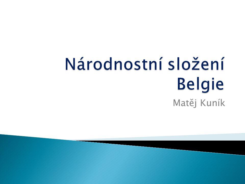 Národnostní složení Belgie