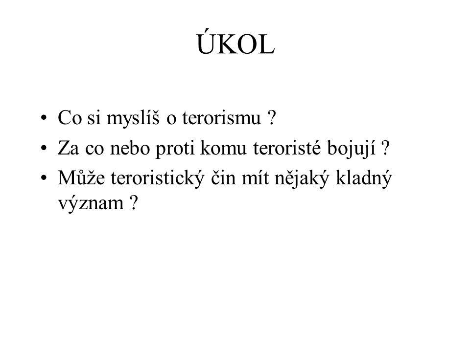 ÚKOL Co si myslíš o terorismu
