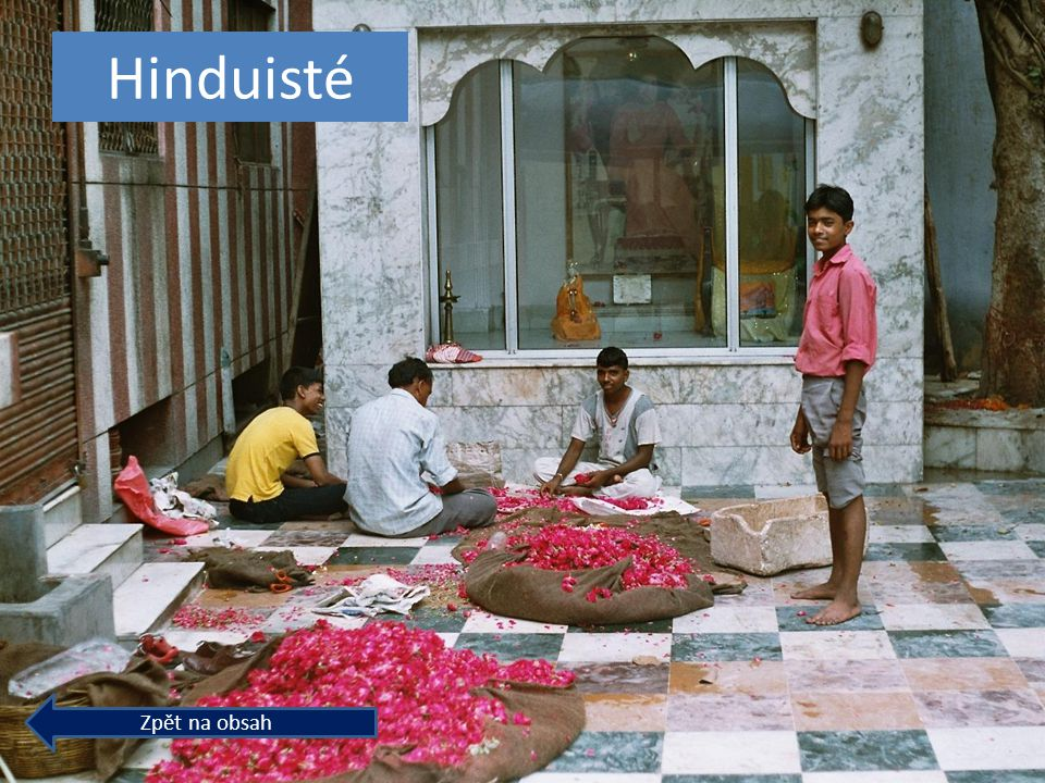 Hinduisté Zpět na obsah
