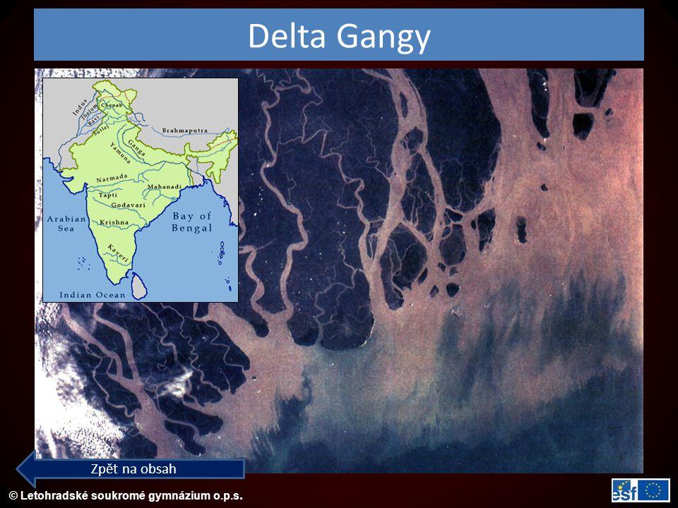 Delta Gangy Zpět na obsah