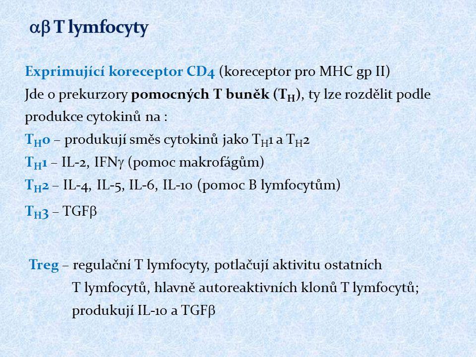 ab T lymfocyty