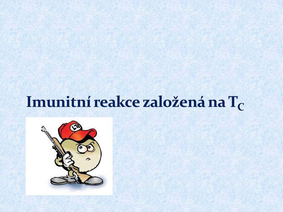 Imunitní reakce založená na TC