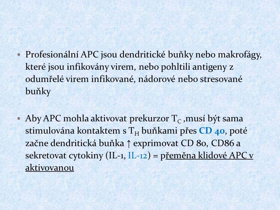 Profesionální APC jsou dendritické buňky nebo makrofágy, které jsou infikovány virem, nebo pohltili antigeny z odumřelé virem infikované, nádorové nebo stresované buňky