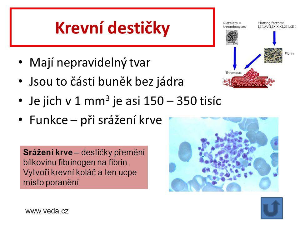 Krevní destičky Mají nepravidelný tvar Jsou to části buněk bez jádra