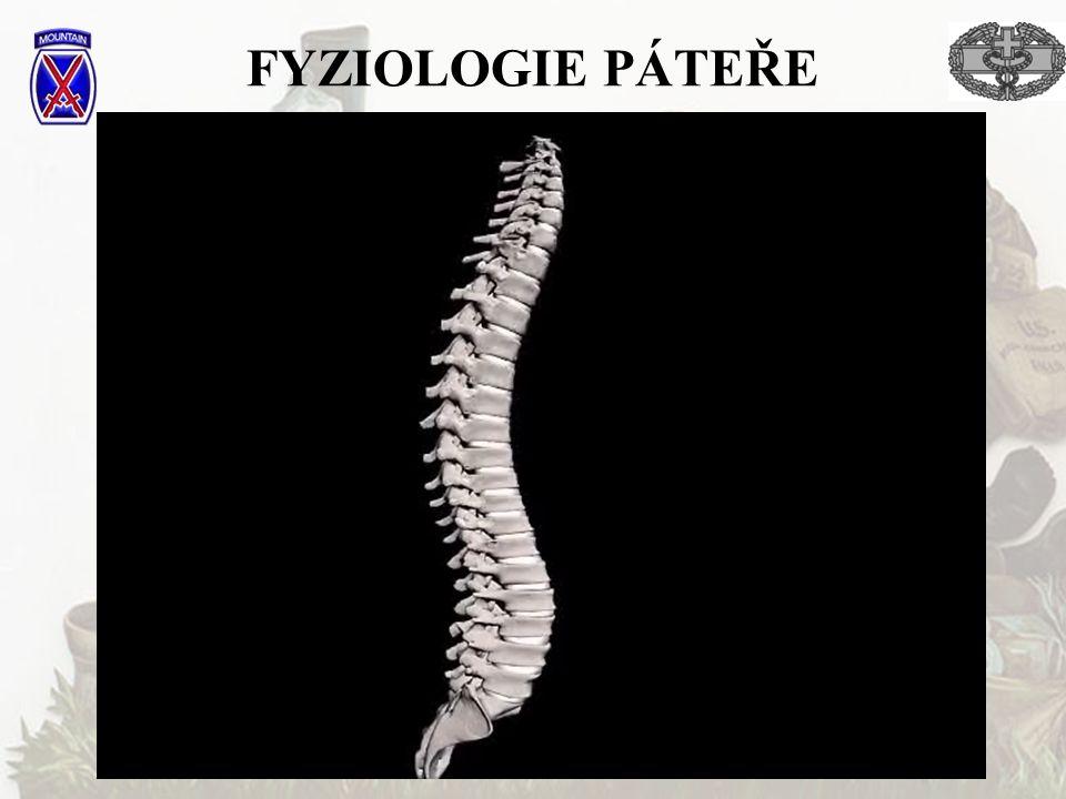 FYZIOLOGIE PÁTEŘE