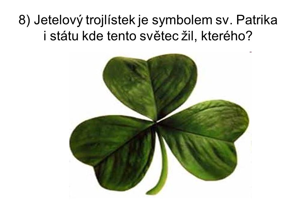 8) Jetelový trojlístek je symbolem sv