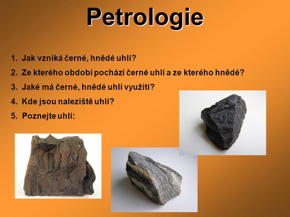 Petrologie Jak vzniká černé, hnědé uhlí