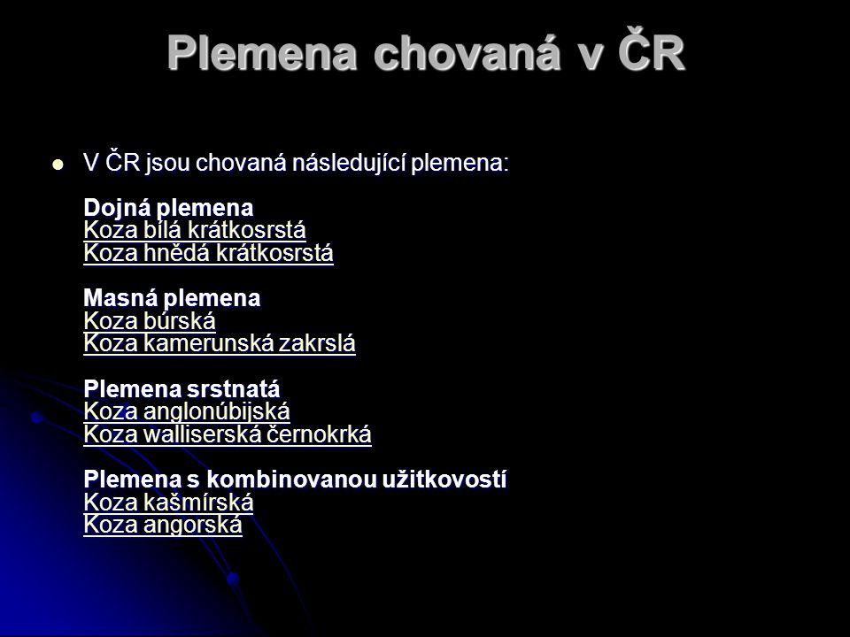 Plemena chovaná v ČR