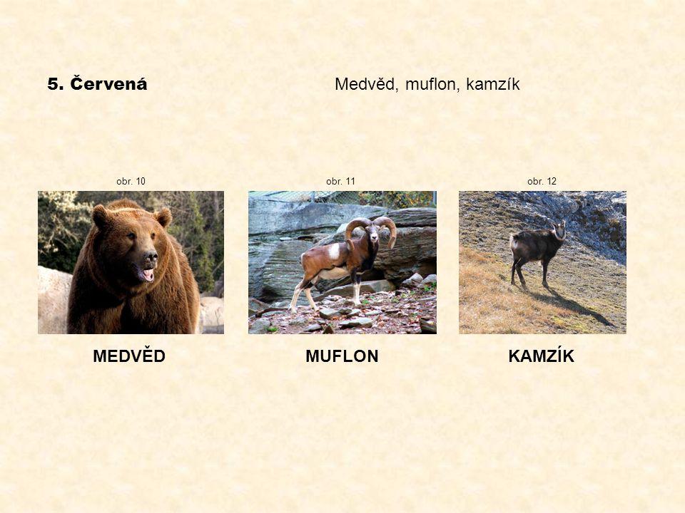 5. Červená Medvěd, muflon, kamzík MEDVĚD MUFLON KAMZÍK obr. 10 obr. 11
