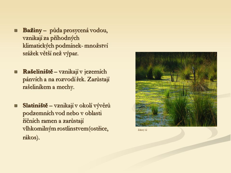 Bažiny – půda prosycená vodou, vznikají za příhodných klimatických podmínek- množství srážek větší než výpar.
