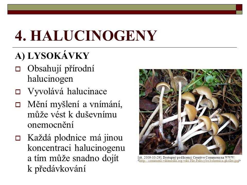 4. HALUCINOGENY A) LYSOKÁVKY Obsahují přírodní halucinogen