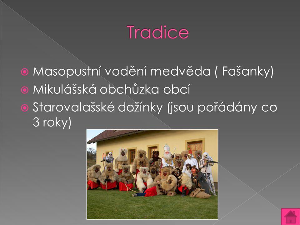 Tradice Masopustní vodění medvěda ( Fašanky) Mikulášská obchůzka obcí