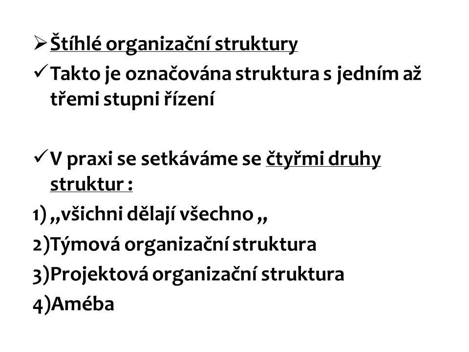 Štíhlé organizační struktury