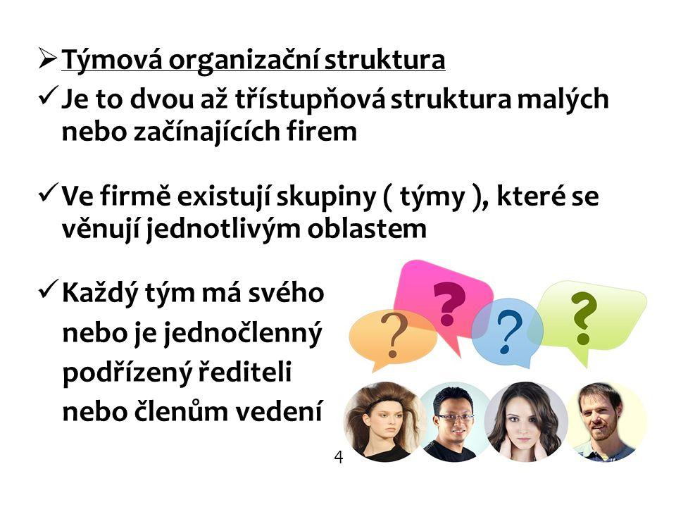 Týmová organizační struktura