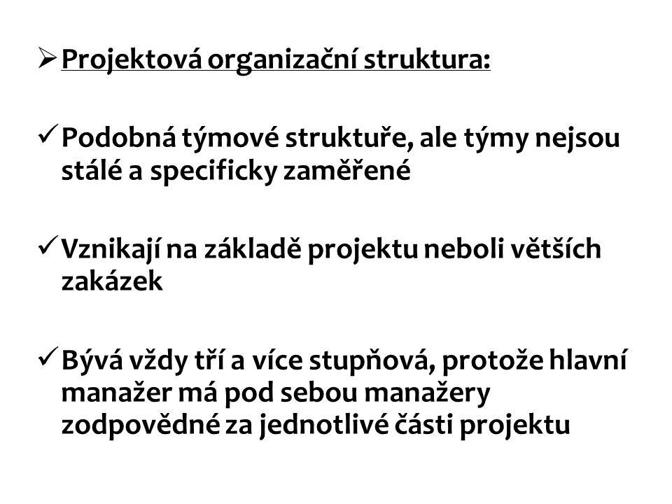 Projektová organizační struktura: