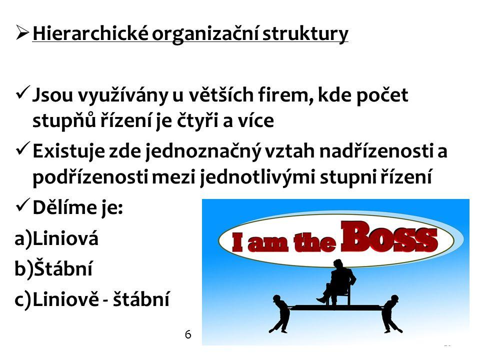 Hierarchické organizační struktury