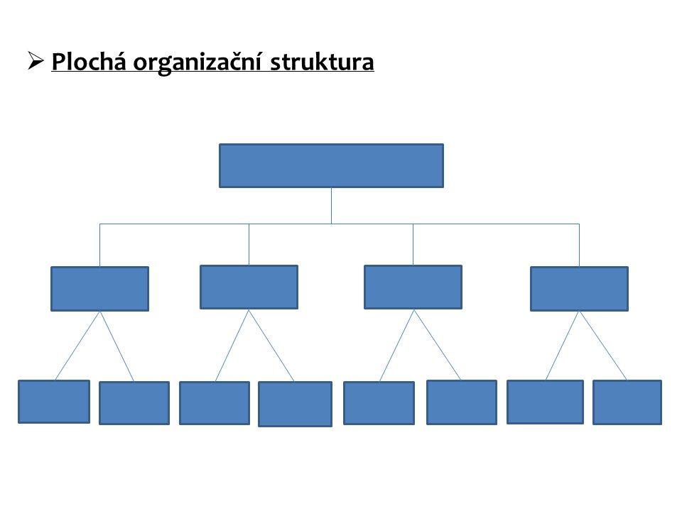 Plochá organizační struktura
