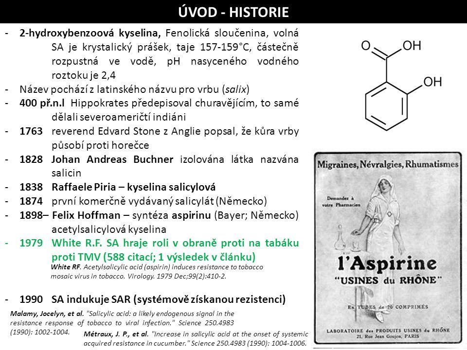 ÚVOD - HISTORIE
