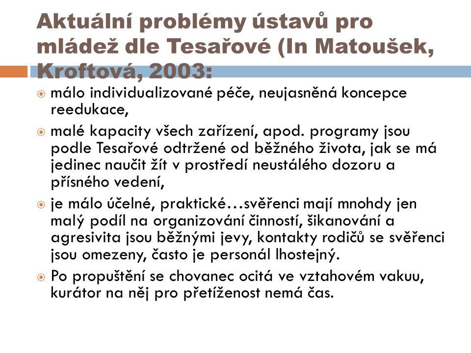 Aktuální problémy ústavů pro mládež dle Tesařové (In Matoušek, Kroftová, 2003:
