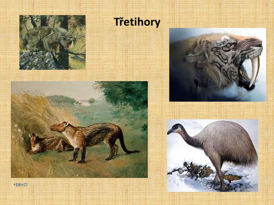 Třetihory savci