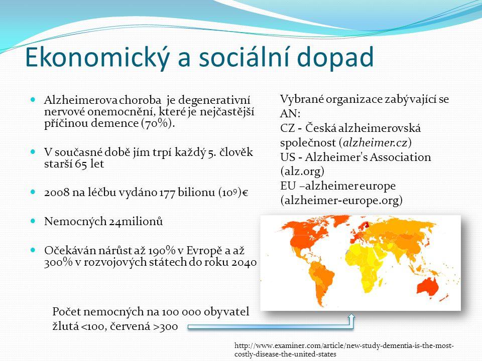 Ekonomický a sociální dopad