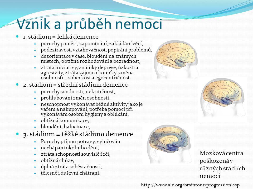 Vznik a průběh nemoci 3. stádium = těžké stádium demence
