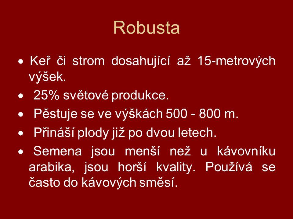 Robusta · Keř či strom dosahující až 15-metrových výšek.