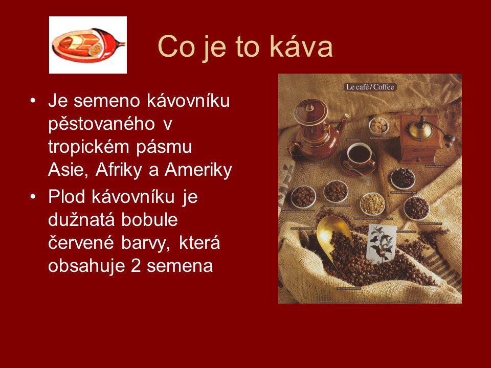 Co je to káva Je semeno kávovníku pěstovaného v tropickém pásmu Asie, Afriky a Ameriky.