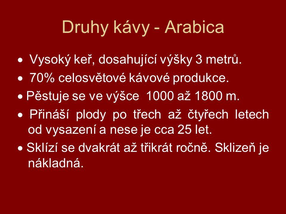 Druhy kávy - Arabica · Vysoký keř, dosahující výšky 3 metrů.