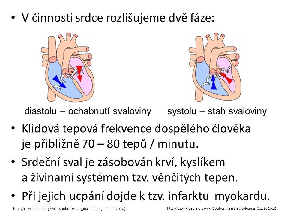 V činnosti srdce rozlišujeme dvě fáze: