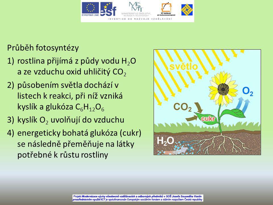 Průběh fotosyntézy rostlina přijímá z půdy vodu H2O a ze vzduchu oxid uhličitý CO2.