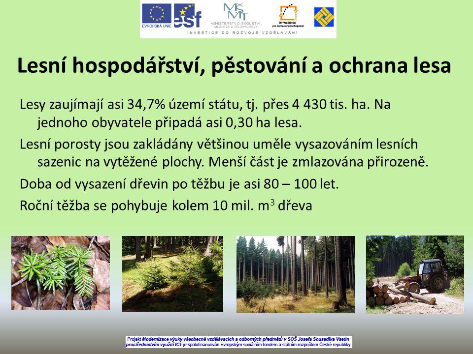 Lesní hospodářství, pěstování a ochrana lesa