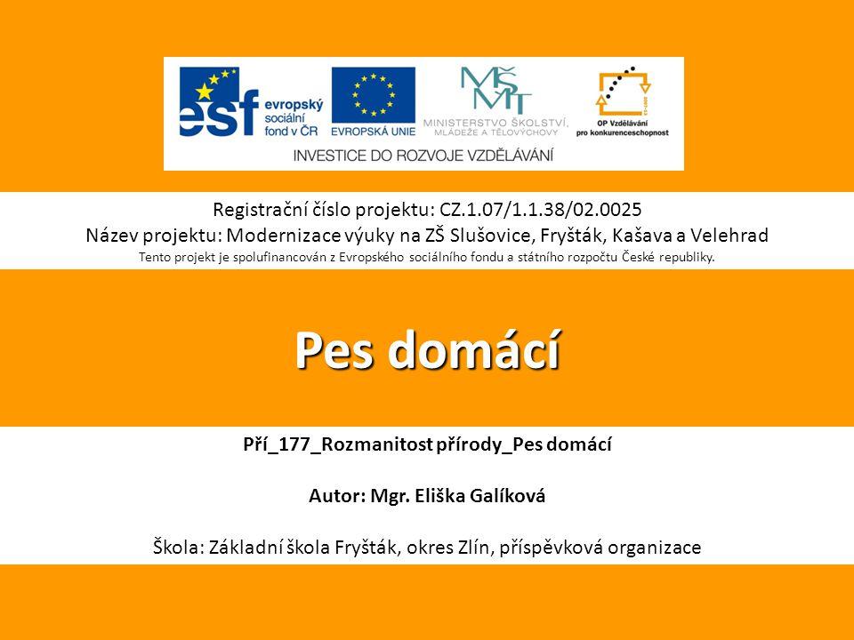Pří_177_Rozmanitost přírody_Pes domácí Autor: Mgr. Eliška Galíková