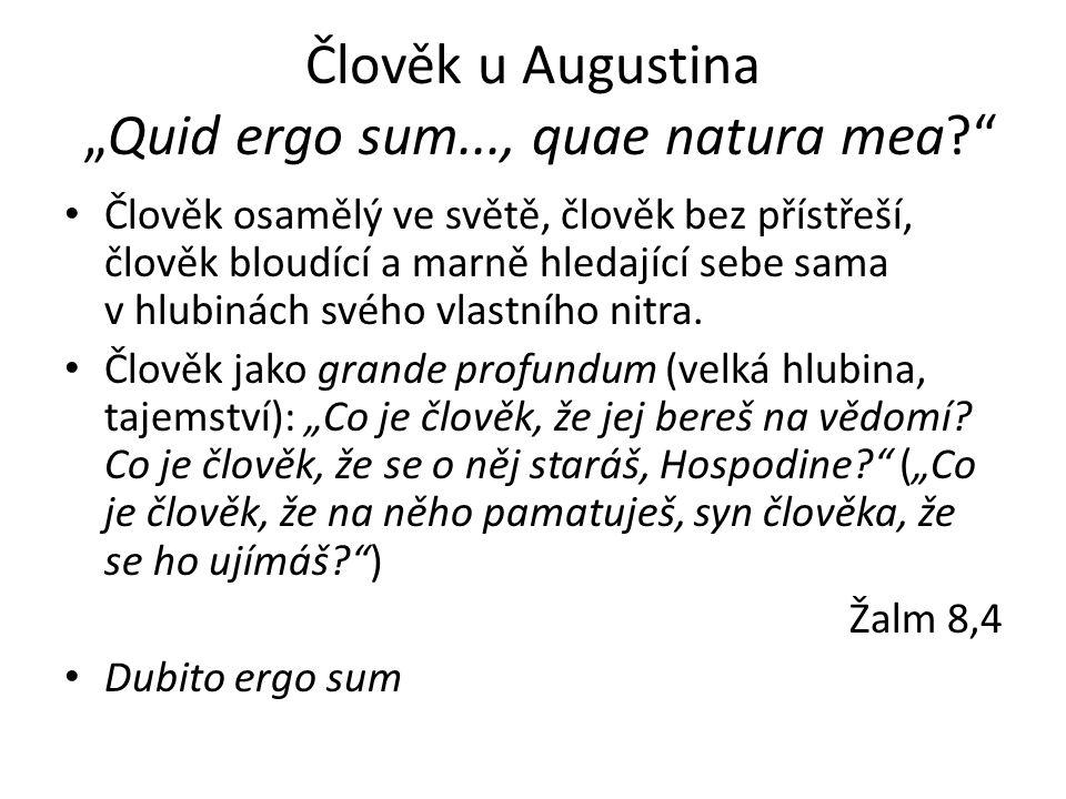 """Člověk u Augustina """"Quid ergo sum..., quae natura mea"""