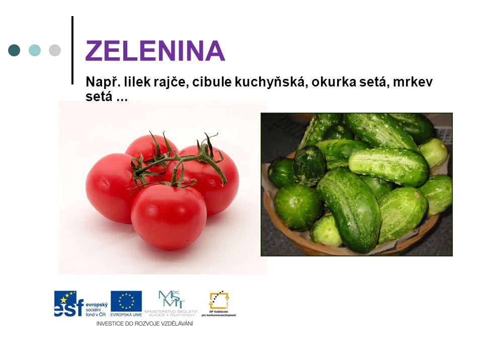 ZELENINA Např. lilek rajče, cibule kuchyňská, okurka setá, mrkev setá ...