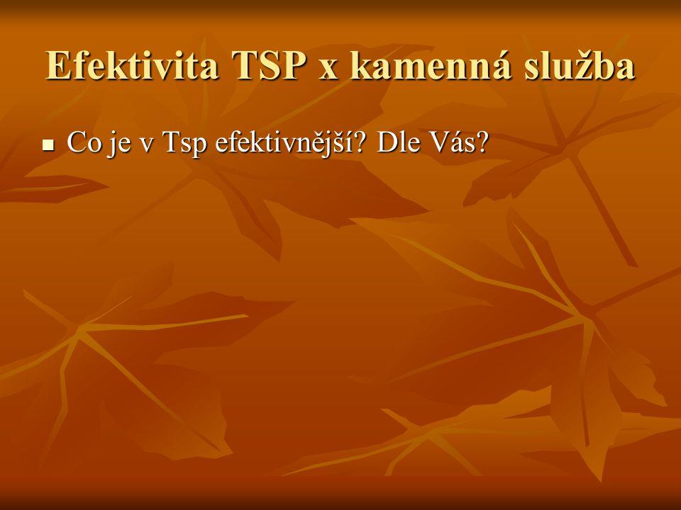 Efektivita TSP x kamenná služba