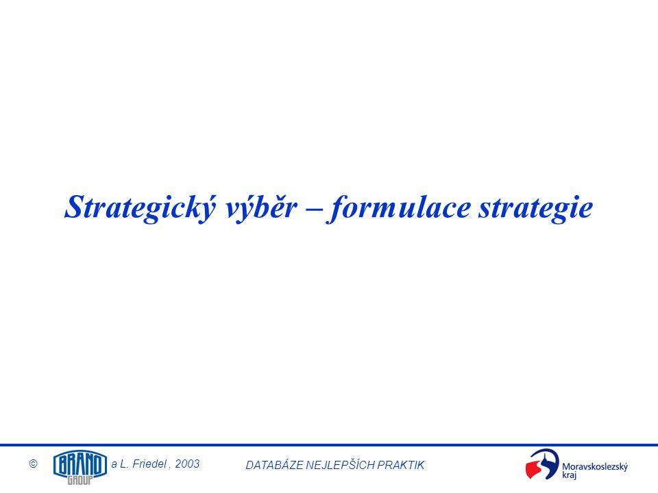 Strategický výběr – formulace strategie