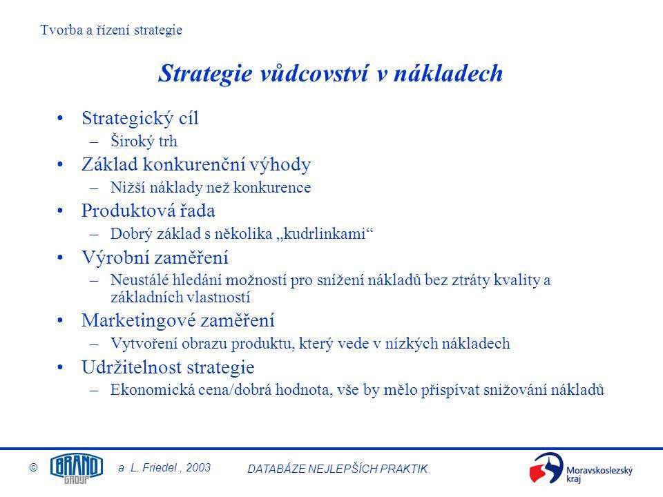 Strategie vůdcovství v nákladech