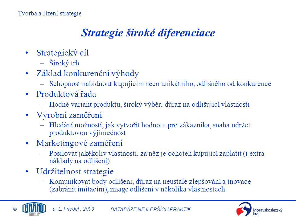 Strategie široké diferenciace