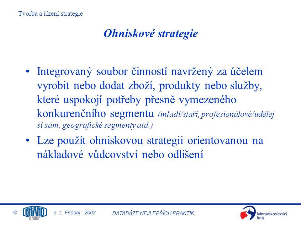 Ohniskové strategie