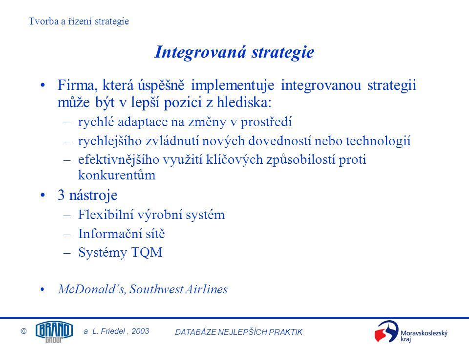 Integrovaná strategie