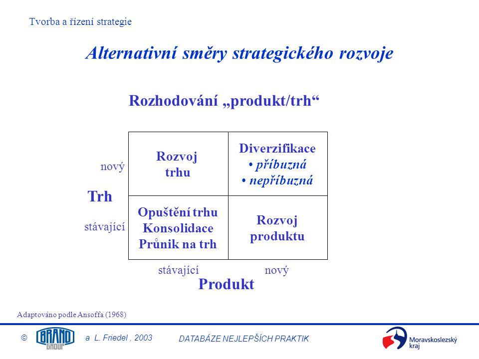 Alternativní směry strategického rozvoje