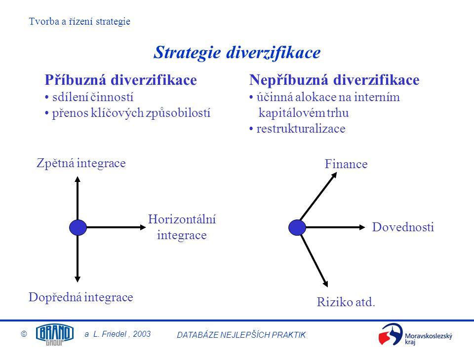 Strategie diverzifikace
