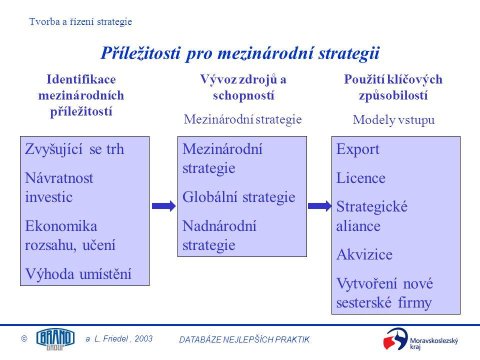 Příležitosti pro mezinárodní strategii