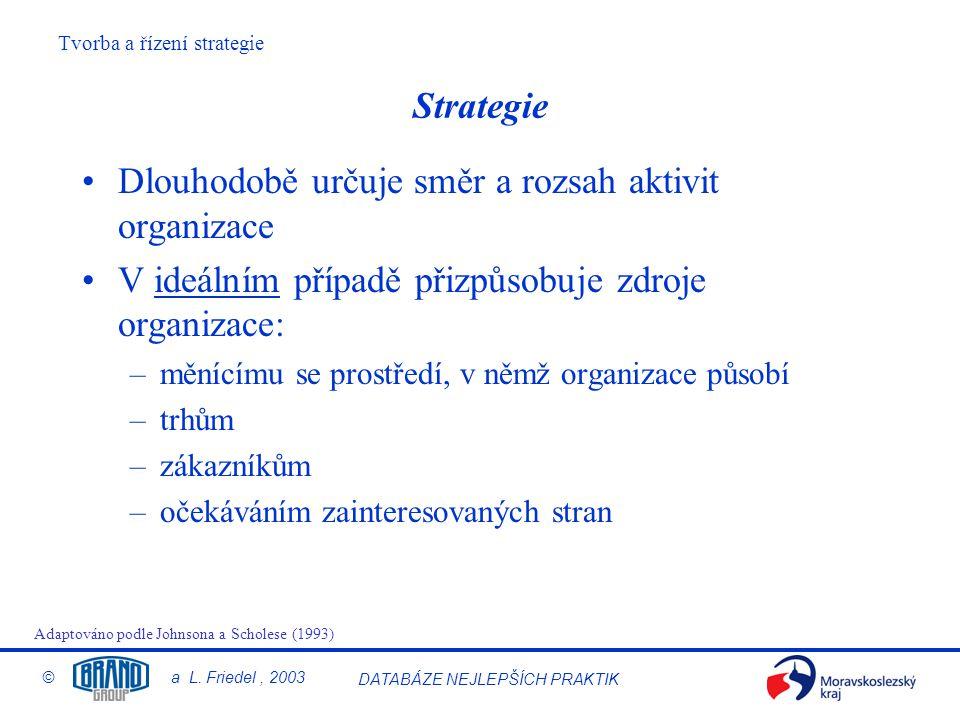 Dlouhodobě určuje směr a rozsah aktivit organizace