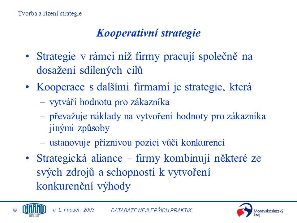 Kooperativní strategie