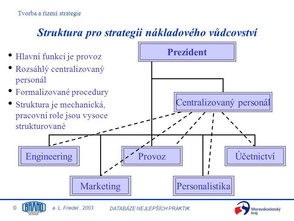 Struktura pro strategii nákladového vůdcovství