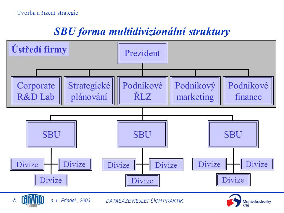 SBU forma multidivizionální struktury