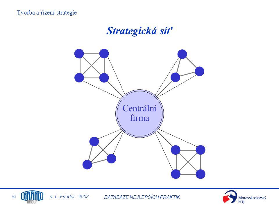 Strategická síť Centrální firma